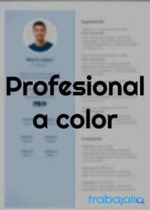 plantilla CV profesional