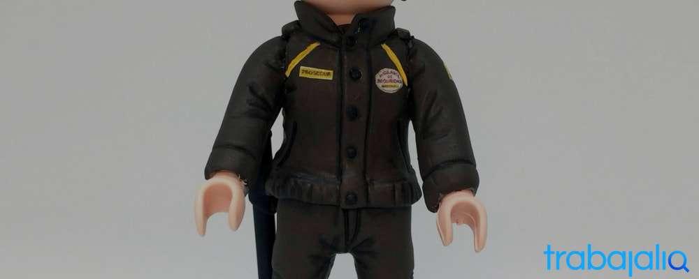 vestimenta vigilante seguridad