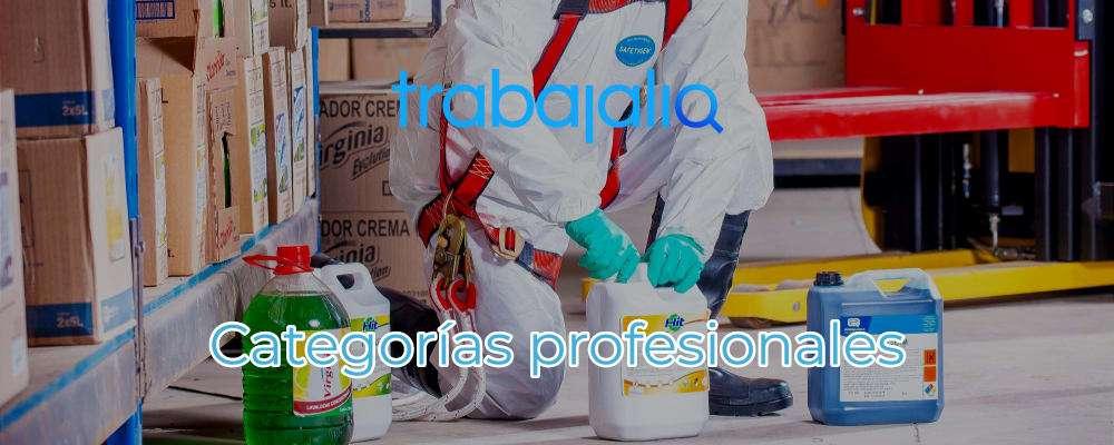categoría profesional
