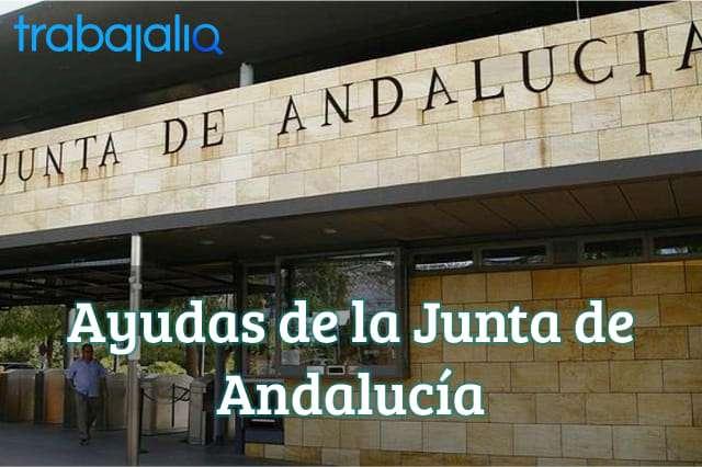 Ayudas de la Junta de Andalucía